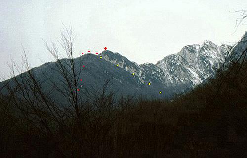 lg19 Monte Palon tracciato discsa