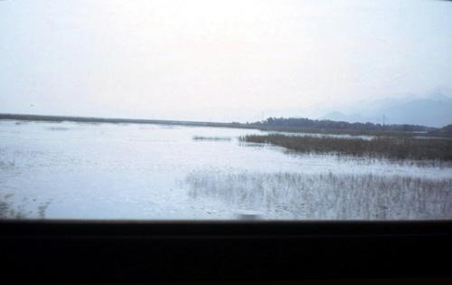 bu61 Lago di Scutari