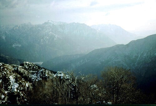 31  Monte Plauris