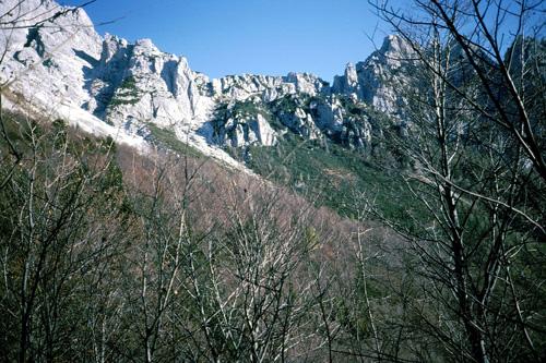 8  panoramica