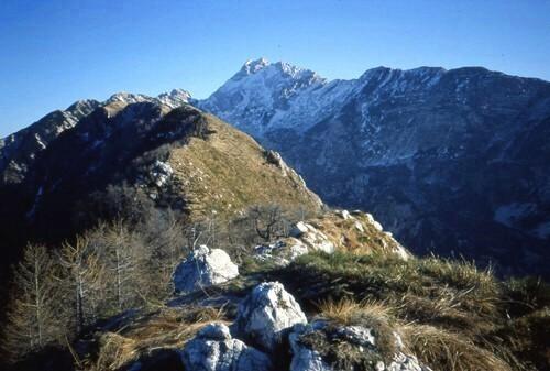 20  1  0  C. dei Larici con il Monte Plauris
