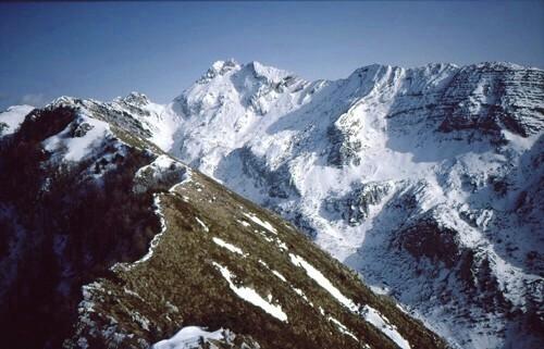 25  6  5  il Gruppo del Monte Plauris
