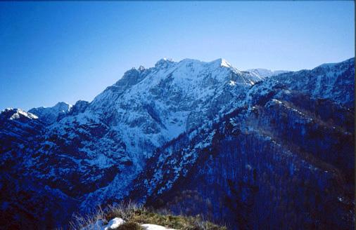 10 il Gruppo del Monte Plauris