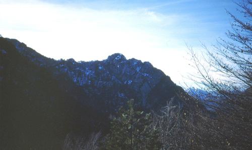 21 Il Monte Cjucis m 1315