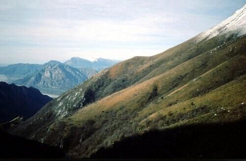4  panoramica  limite della neve