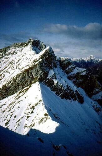 9  La Cresta bassa percorsa e il Monte Plauris