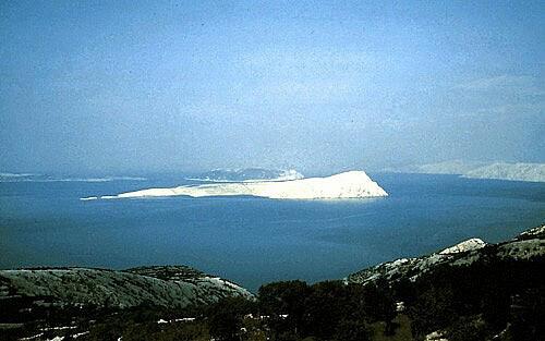 bu36 Isola Calva
